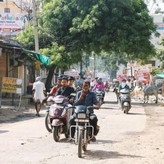 Jour 15 : Bundi, ses scooters, ses vaches 🇮🇳