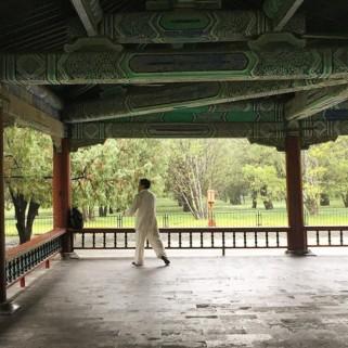 Jour 23 : Temple du Ciel et pluie pluie pluie 🌧⛈☔️