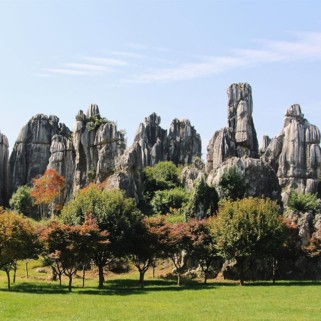 Jour 46 : la forêt de pierres de Shilin 🗿🍂🌲