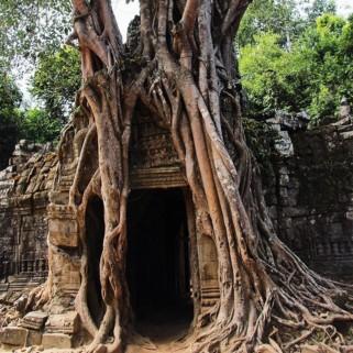 Jour 78 : Byebye la Thailande & Jour 79 : Hello le Cambodge et les temples d'Angkor 🇰🇭