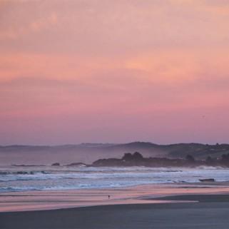 Jour 183 : Un joli lever de soleil pour un beau jour dans les Catlins ! Des cascades, des plages et Curio Bay 🇳🇿