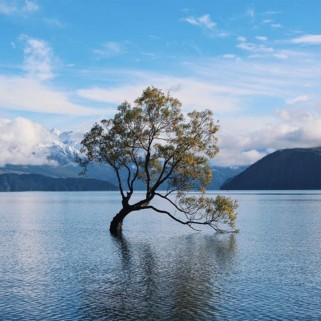 Jour 188 : Wanaka, ses lacs et un peu de soleil 😍🇳🇿