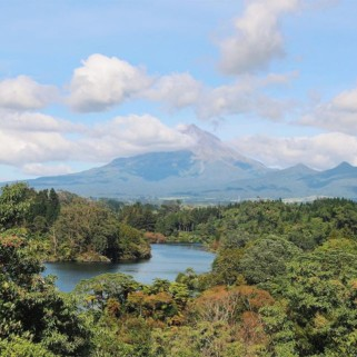 Jour 204 : Mont Taranaki et New Plymouth 🗻🔥