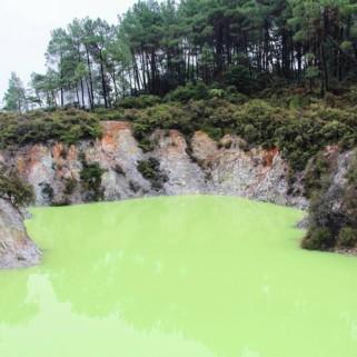 Jour 207 : Wai-O-Tapu, belles couleurs, mauvaises odeurs 🤢💨