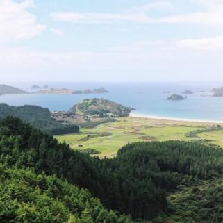 Jour 211 : Bay of islands 🗾