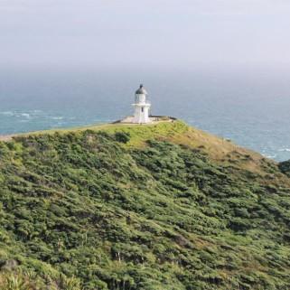 Jour 212 : Cape Reinga et 90 miles Beach 🇳🇿