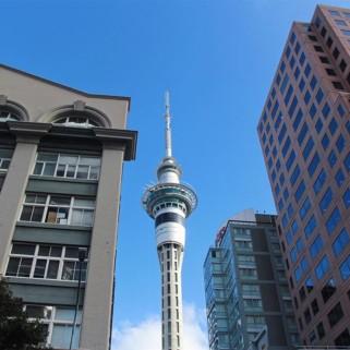 Jour 214 : On rend le van à Auckland 🚐 Merci Loulou d'avoir tenu ces 7133km sans (vraies) galères !