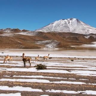 Jour 280 : Sud Lipez ➡️ San Pedro de Atacama ! Rebonjour le Chili !