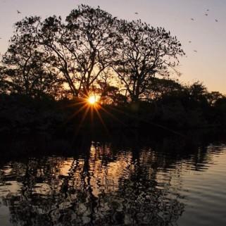 Jour 313 : Pantanal jour 2, balade à cheval, pêche aux piranhas et bateau 🐴🐠🐥