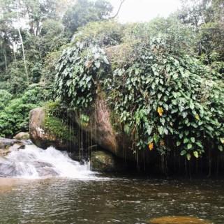 Jour 321 : La cascade de Tarzan 🌴 et sinon pluie pluie pluie 🙄